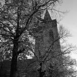 Utrecht kościół Fotografia Royalty Free