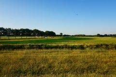 Landscape of Dutch grassy farmland at dusk stock photo