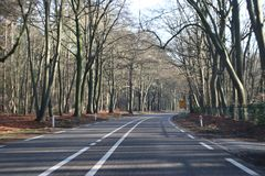 Utrechtseweg N225 between wageningen and Renkum with trees along road in the winter. Utrechtseweg N225 between wageningen and Renkum with trees along road in royalty free stock images