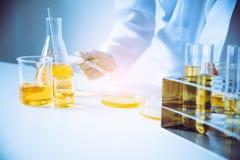 Utrustning och olje- hällande forskare för vetenskapsexperiment med te royaltyfri fotografi