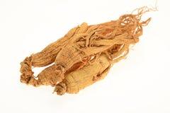 Utrzymani Ginseng korzenie zdjęcie stock