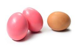 Utrzymani kaczek jajka, jajko na białym tle i Zdjęcia Royalty Free