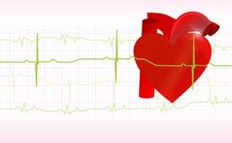 Utrzymuje twój serce zdrowy Zdjęcia Stock