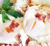 Utsökta tjuvjagade ägg med olivolja, skinka, vitlök och persilja Arkivfoton
