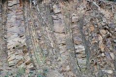 Utsatta sedimentär stenlager på grekisk berglutning Royaltyfri Bild