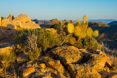 Utsikt för berg för Mojaveöken arkivfoto