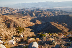Utsiktpunktsikt av nationalparken för Joshua Tree arkivbilder