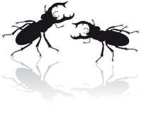 utskjutande illustrationfullvuxen hankronhjort royaltyfri illustrationer