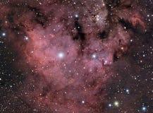 Utsläppnebulosa NGC7822 Royaltyfri Fotografi