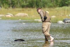 Utsläppta Ladoga för zoologer ringed skyddsremsor efter rehabilitering Arkivfoto