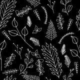 Utsmyckad blom- sömlös textur för klotter Royaltyfri Bild