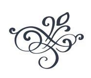 Utsmyckad garnering för krusidullvirvel för spetsig stil för pennfärgpulverkalligrafi Fjäderpennakrusidullar För kalligrafidiagra stock illustrationer