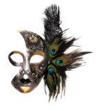 utsmyckad karnevalmaskering Royaltyfria Foton