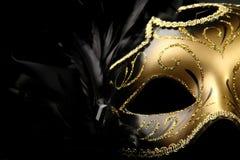 utsmyckad karnevalmaskering Arkivbild