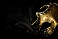 utsmyckad karnevalmaskering Royaltyfri Bild