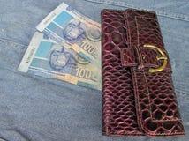 Utsmyckad plånbok med pengar Arkivbild