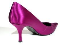 utsmyckad sko Fotografering för Bildbyråer