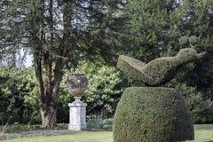 Utsmyckad trädgårds- topiary Arkivfoton