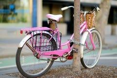 Utsmyckade rosa färger cyklar parkerat av ett träd i New York royaltyfria foton