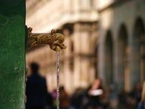 Utsmyckat klapp i Milan Arkivbild