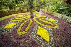 Utsmyckat landskap i en härlig trädgård arkivfoton