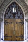 utsmyckat trä för dörrar royaltyfria bilder