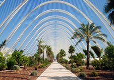 utsmyckat trädgårds- tropiskt royaltyfri fotografi