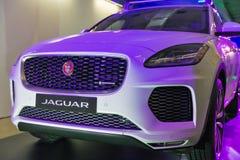 Utställning med Jaguar E-PACE P300 i Kiev, Ukraina Royaltyfri Bild