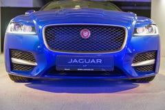 Utställning med Jaguar XF i Kiev, Ukraina Royaltyfri Foto