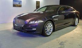 Utställning med Jaguar XJ i Kiev, Ukraina Royaltyfria Foton