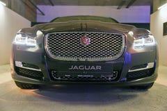 Utställning med Jaguar XJ i Kiev, Ukraina Royaltyfria Bilder