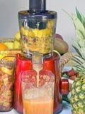 Utsugningsfläktfruktsaft lågt r/min., i att arbeta, producerar ny fruktsaft without Fotografering för Bildbyråer