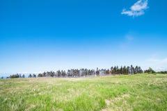 Utsukushigahara公园美好的风景是其中一个多数 库存图片