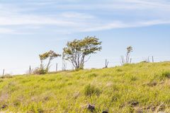 Utsukushigahara公园美好的风景视图是一个  免版税库存照片