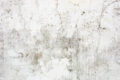 uttalad vägg för spricka Royaltyfri Fotografi