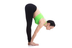 Uttanasana, intense forward bend yoga pose Stock Photography