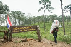 Uttaradit, Ταϊλάνδη, στις 5 Αυγούστου 2018: Ισχυρός εργαζόμενος ατόμων και πολλές αποσκευές στην οδοιπορία τρόπων στα βουνά ` phu στοκ φωτογραφίες με δικαίωμα ελεύθερης χρήσης
