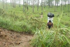 Uttaradit, Thaïlande, le 5 août 2018 : Travailleur d'homme fort et beaucoup de bagages sur le trekking de manière aux montagnes d photos libres de droits