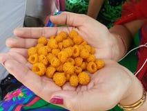 Uttarakhand印度莓果 免版税库存图片
