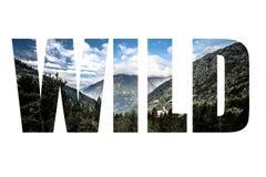 Uttrycka den LÖSA over skogen, berg och moln Landskap _ Arkivbild