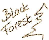 Uttrycka den svarta skogen och trädet som fylls med trästycket Arkivbilder