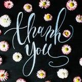 Uttrycket tackar dig som är skriftlig med krita i kalligrafistil på den svarta svart tavlan Royaltyfri Foto