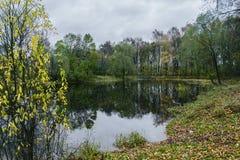 Utumn reflexion i vattnet av skogsjön royaltyfria foton