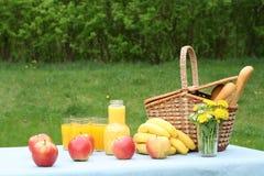 utvändig picknick fotografering för bildbyråer