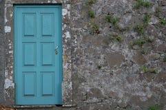 Utvändig sikt av den blåa dörren mot en vägg med växter Fotografering för Bildbyråer