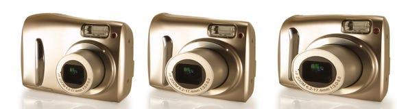 utvecklingar tre Fotografering för Bildbyråer