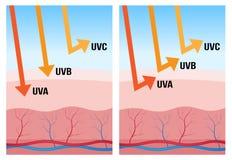 UV-α, UV-β και uv-c προστασία διανυσματική απεικόνιση
