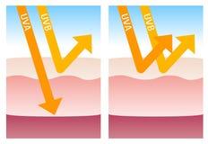 UV--ein und UV-b Schutz Lizenzfreies Stockfoto