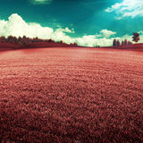UV landscape Royalty Free Stock Images