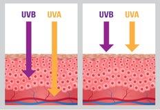 UV-, UVa und UVb-Schutz Stockfotografie